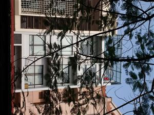 Thiết kế nhà phố tại Dịch Vọng