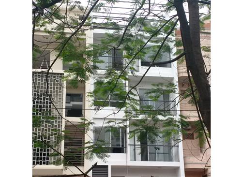 Xây dựng nhà phố 53 Dịch Vọng